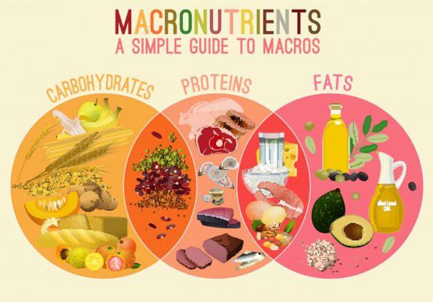PHOTO: There are three types of macronutrients, carbohydrates, proteins, and fats. (Shutterstock)