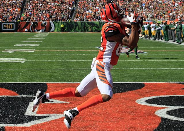 Cincinnati Bengals wide receiver Marvin Jones catches an 11-yard touchdown pass against the Green Bay Packers in the second half of an NFL football game, Sunday, Sept. 22, 2013, in Cincinnati. (AP Photo/Tom Uhlman)