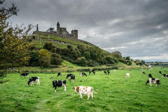 <p>This famous Medieval site has buildings that date back to the 12th century and is steeped in history and lore.</p>