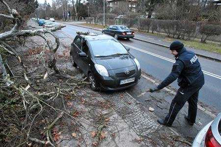 A police officer inspects the site where a car was hit by a fallen tree after strong winds caused by hurricane-force Xaver slammed into Szczecin, northern-western Poland, December 6, 2013. REUTERS/Cezary Aszkielowicz/Agencja Gazeta