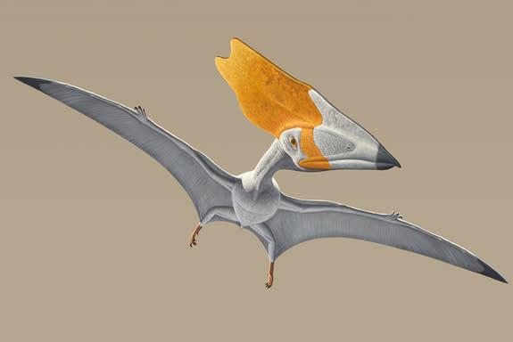 How Pterosaurs Ruled the Skies Above the Dinosaurs