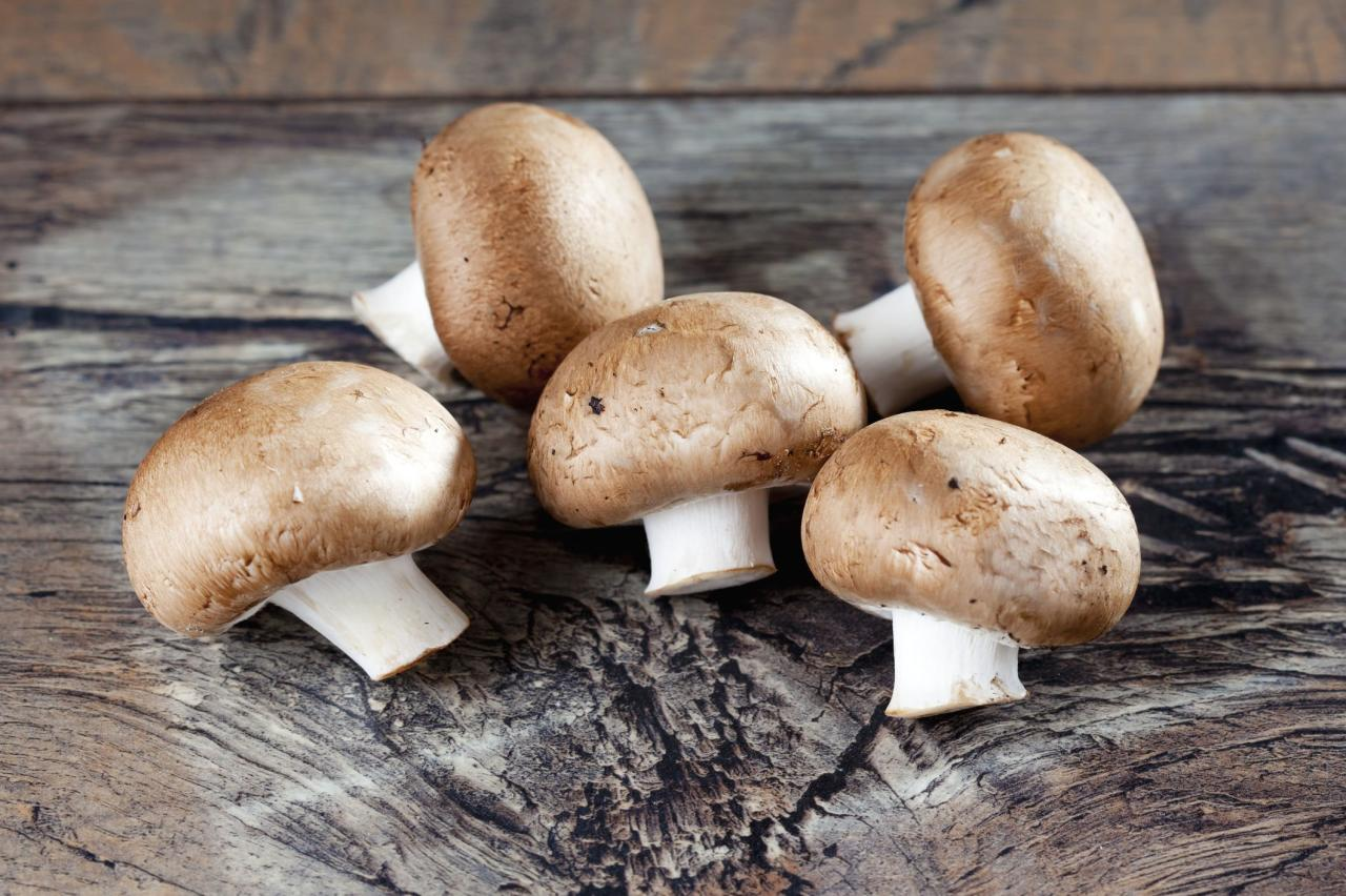 "<p>The older, darker colored version of the popular white button mushrooms, these can be baked into lasagna and other <a href=""https://www.southernliving.com/dish/casserole/cheesy-casserole-recipes"">cheesy casseroles</a>, sliced and tossed into salads, or stuffed and served as <a href=""https://www.southernliving.com/food/entertaining/appetizer-recipes"">appetizers</a>.</p>"