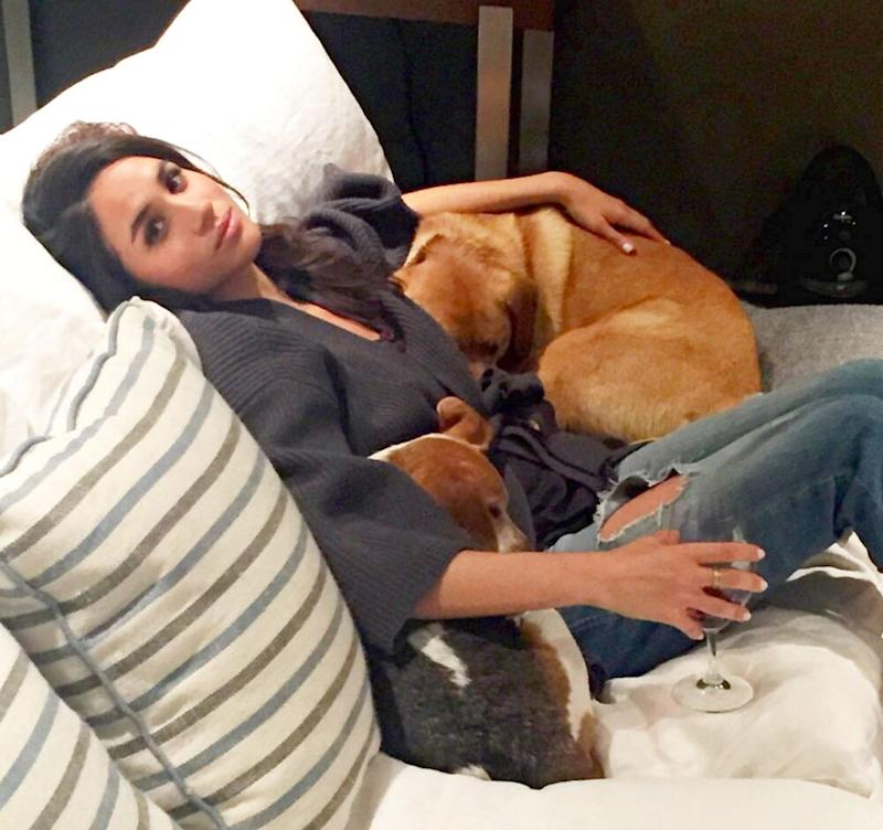 Meghan Markle with her dogs, Bogart and Guy | Meghan Markle/Instagram