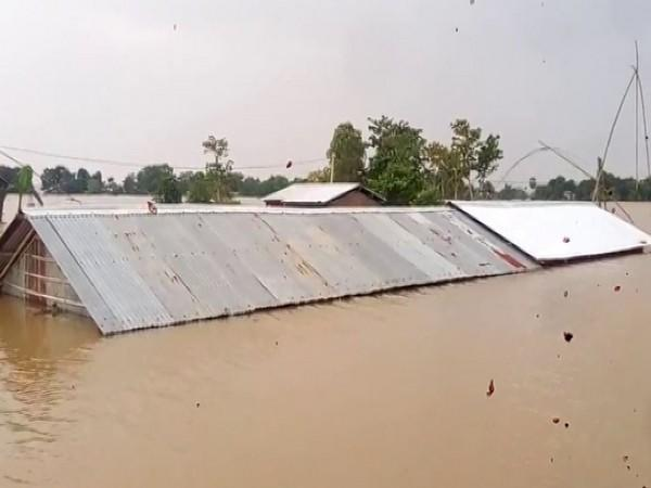 Houses submerged in the floodwaters.