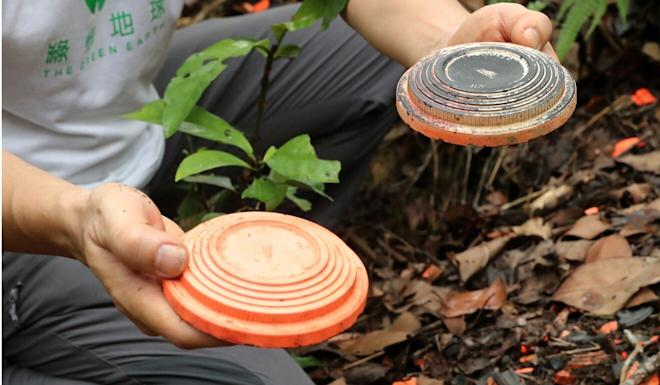 Clay pigeons used as shooting targets were found in the country park. Photo: Edmond So