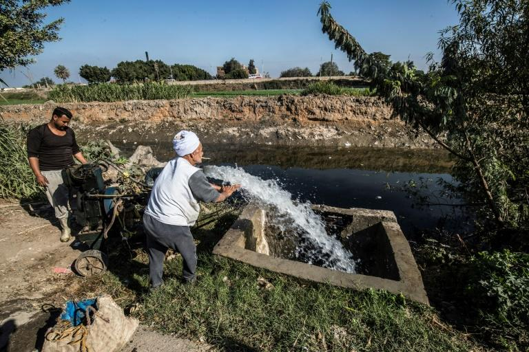 The Nile is a lifeline to Egypt, where 95 percent of the country's 100 million people live along its banks (AFP Photo/Khaled DESOUKI)