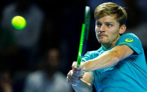 <span>Goffin is one of the form players heading into London</span> <span>Credit: Reuters </span>