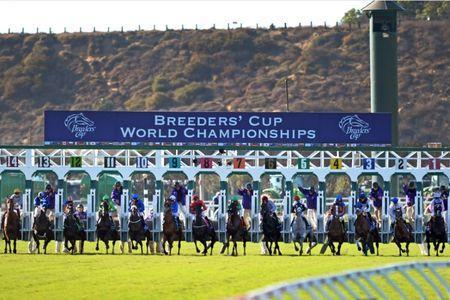 Nov 4, 2017; Del Mar, CA, USA; The ninth race out of the gate during the 34th Breeders Cup world championships at Del Mar Thoroughbred Club. Mandatory Credit: Jake Roth-USA TODAY Sports