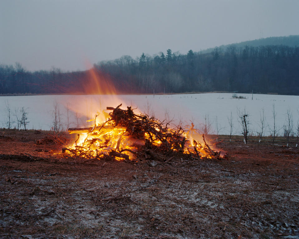 <p>Orchard burning in Livingston, N.Y., 2016. (© <span>Tema</span> <span>Stauffer</span> from the book <i>Upstate </i>published by Daylight Books) </p>