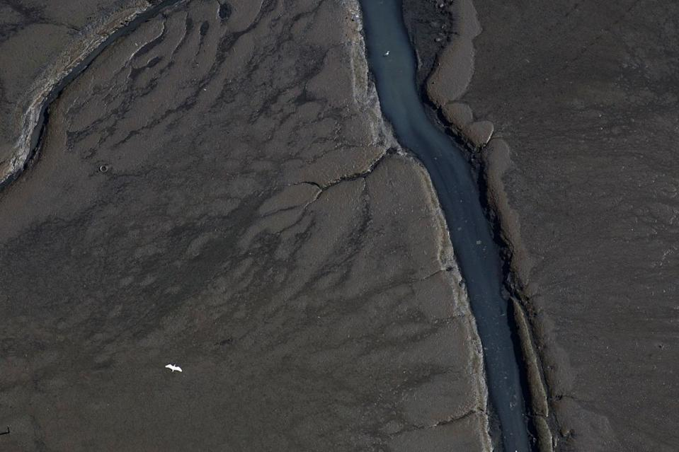 <p>In this July 5, 2016 photo, a bird flies over sewage filled water and sludge flowing into Guanabara Bay in the suburb of Sao Goncalo, across the bay from Rio de Janeiro, Brazil. Athletes, who have trained years for a chance at Olympic glory, have resigned themselves to competing in the filth and are taking precautions. (AP Photo/Felipe Dana)</p>