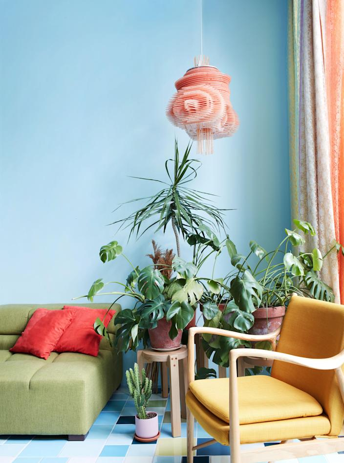 Plants flourish in a corner of the sun-filled living space.