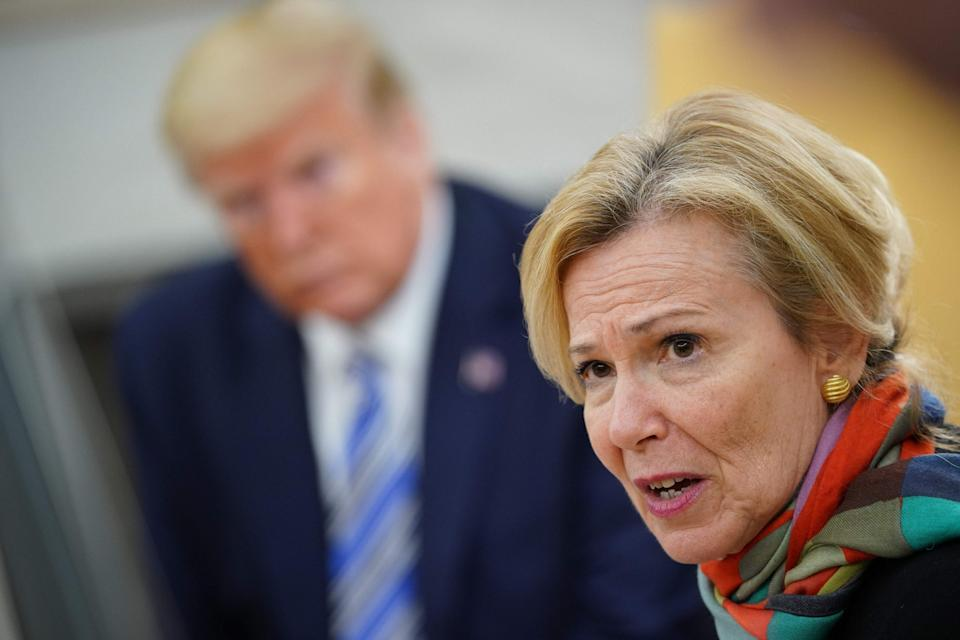 Deborah Birx speaks as Donald Trump looks on during a meeting with Florida governor Ron DeSantis in the Oval Office: AFP via Getty Images