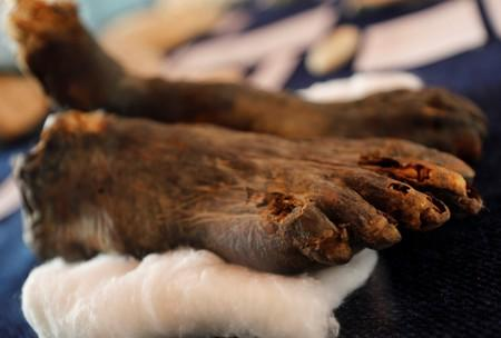 A mummy's feet are displayed during the presentation of a new discovery in the Monkey Valley near the Valley of the Kings in Luxor