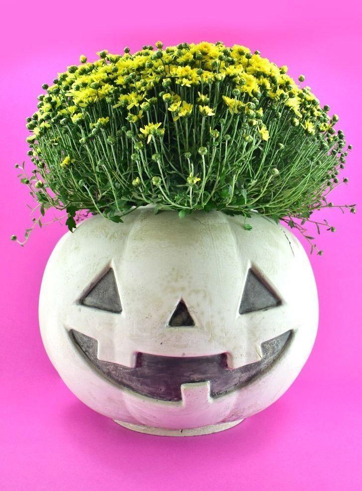 """<p>Rather than keep your mums in the plastic planters they come in, tackle this easy DIY to make dollar store pumpkins look like cool concrete planters. </p><p><a class=""""link rapid-noclick-resp"""" href=""""https://www.dreamalittlebigger.com/post/cement-pumpkin.html"""" rel=""""nofollow noopener"""" target=""""_blank"""" data-ylk=""""slk:GET THE TUTORIAL"""">GET THE TUTORIAL</a></p>"""