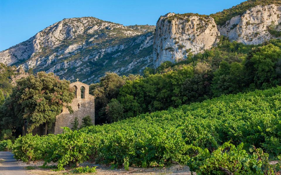 Anthony says the wine-makers of Languedoc are thrilled to welcome visitors - Getty