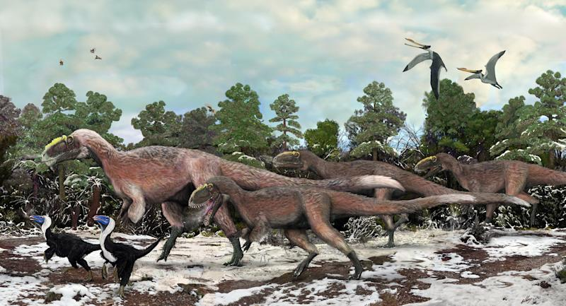 This artist concept provided by the Beijing Institute of Vertebrate Paleontology and Paleoanthropology shows Y. huali and other smaller dinosaurs roaming 125 million years ago. A new study published in the journal Nature found that Y. huali, an earlier relative of T. rex, had a feathery coat, suggesting that the king of dinosaurs may have also been fuzzy. (AP Photo/Beijing Institute of Vertebrate Paleontology and Paleoanthropology, Brian Choo)