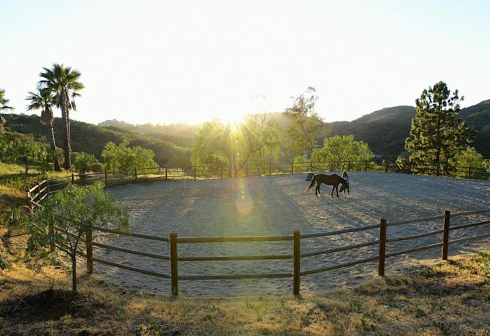 <p>The homeowner initially moved to the property so she could have room for her horses. Now the horses live with a menagerie of other animals as part of the Hope Rescue. Current residents including a turkey, emu, goats, sheep, pygmy cows, donkeys and tortoises.</p><p><i>(Photo: Total Agent)</i><br></p>