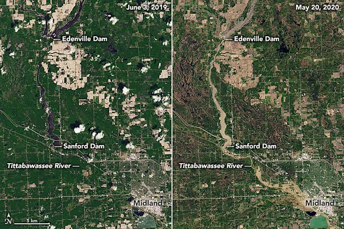 These natural-color images show flooding across Midland County as observed by the Operational Land Imager (OLI) on Landsat 8. The pair show the Tittabawassee River on May 20, 2020 (right), compared to June 3, 2019 (left).