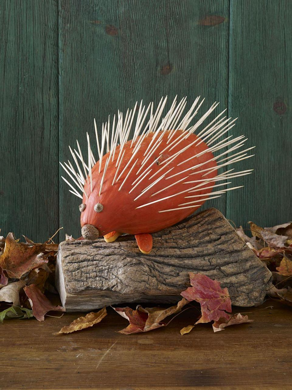 <p>Turn a squash into a cute little hedgehog by sticking toothpicks all over the top. Add tiny acorns for eyes and a nose. </p>