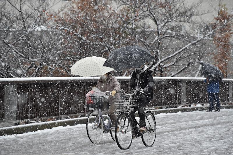 People cycle through a snow shower in Tokyo on November 24, 2016 (AFP Photo/Kazuhiro Nogi)