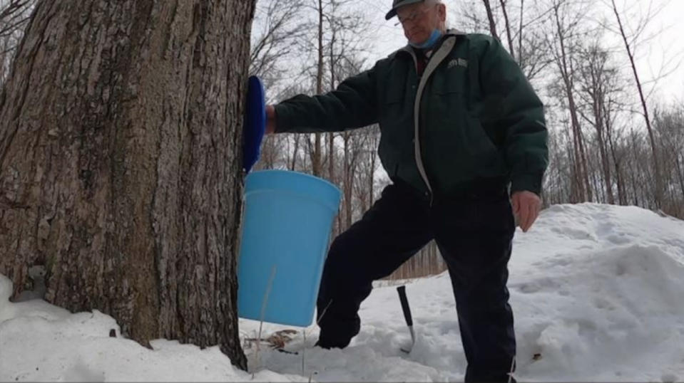 Nothing signals spring's arrival quite like sap flow and sweet maple syrup