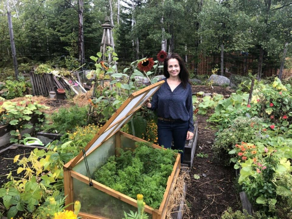 Fall does not mean the end of your beloved vegetable garden