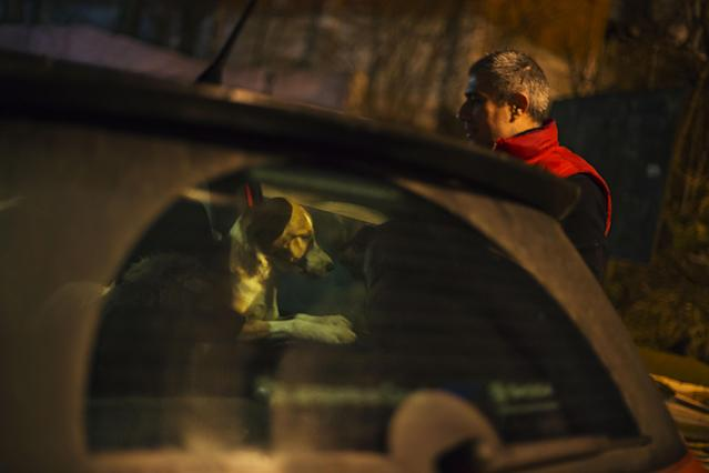 A stray dog brought out of Sochi by an animal activist, waits to be transferred to the car of fellow activist Igor Airapetian, right, at a rendezvous point 120 kilometers away from the Olympic area in the early morning hours of Tuesday, Feb. 11, 2014, in Tuapse, Russia. Airapetian is one of a dozen people in the emerging movement of animal activists in Sochi alarmed by reports that the city has contracted the killing of thousands of stray dogs before and during the Olympic Games. Stray dogs are a common sight on the streets of Russian cities, but with massive construction in the area the street dog population in Sochi and the Olympic park has soared. Useful as noisy, guard dogs, workers feed them to keep them nearby and protect buildings. They soon lose their value and become strays. Tonight, a few dogs will be taken on their way to a new life in Moscow. (AP Photo/David Goldman)