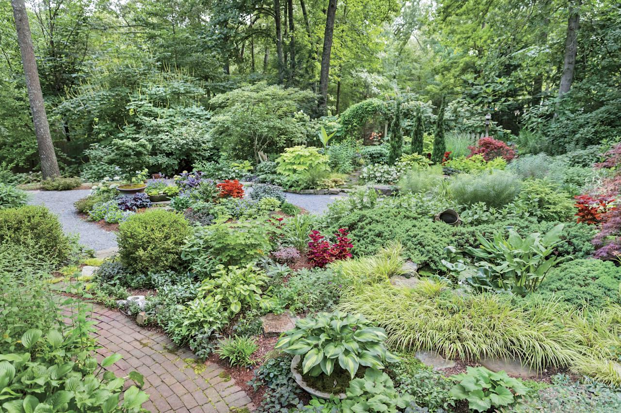 <p>You'll be overwhelmed and probably quit. Brown's garden is a series of areas developed over two decades. It began as a large burn pit in the middle of the backyard into which she tossed a handful of cleome seeds. She added a new area every two to three years.</p>