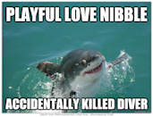 """<div class=""""caption-credit""""> Photo by: QuickMeme.com</div><b>Playful Love Nibble</b> <br> He doesn't know the power of his strength."""