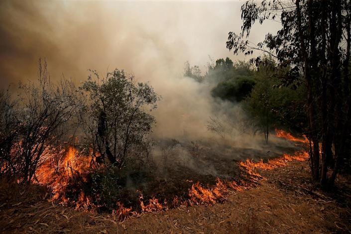 <p>An active front of a forest fire is seen next to the village of Castelo, Portugal, July 26, 2017. (Rafael Marchante/Reuters) </p>