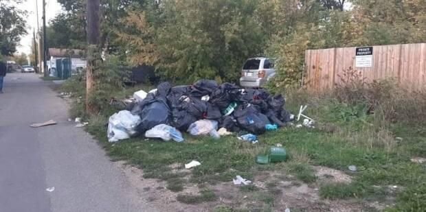 A back alley in Alberta Avenue. Neighbourhoods residents are coming up with plans to make the alleys cleaner and more community-friendly.  (Ariel Fournier/ CBC Edmonton - image credit)