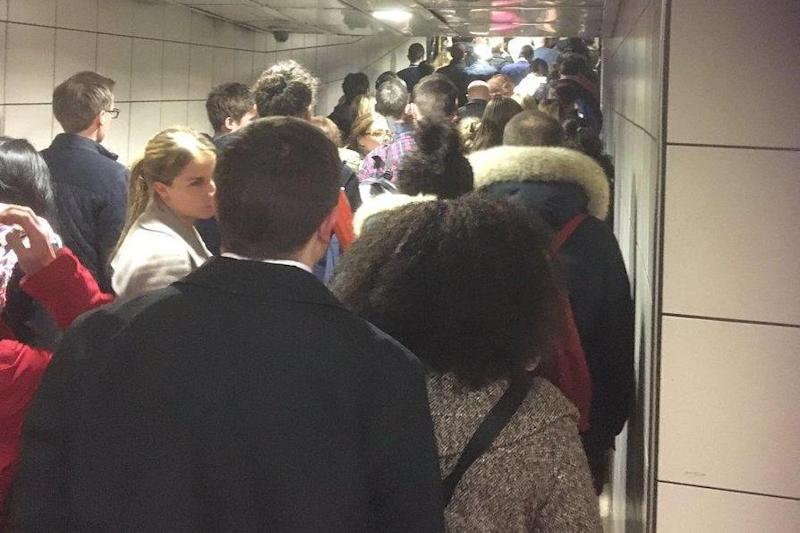 Chaos: Commuters queue for the Bakerloo line after the Northern line is closed: Amanda K
