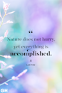 <p>Nature does not hurry, yet everything is accomplished.</p>
