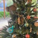 """<p>One Australian family got a particularly festive furry surprise <a href=""""https://people.com/pets/australian-family-finds-koala-in-christmas-tree/"""" rel=""""nofollow noopener"""" target=""""_blank"""" data-ylk=""""slk:when they came home to find a koala climbing their Christmas tree"""" class=""""link rapid-noclick-resp"""">when they came home to find a koala climbing their Christmas tree</a>.</p>"""