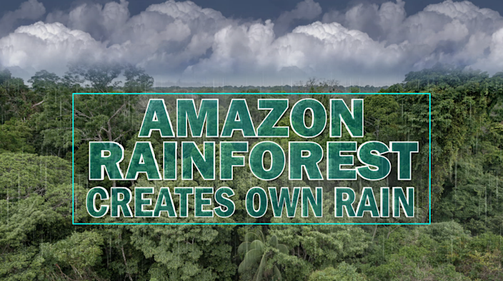 A river of clouds forms over the Amazon as water vapor evaporates from the canopy of trees and condenses above. / Credit: CBS News