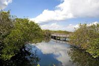 """<p>On this <a href=""""https://www.tripadvisor.com/Attraction_Review-g143024-d102485-Reviews-Anhinga_Trail-Everglades_National_Park_Florida.html"""" rel=""""nofollow noopener"""" target=""""_blank"""" data-ylk=""""slk:boardwalk trail"""" class=""""link rapid-noclick-resp"""">boardwalk trail</a> that's less than a mile long, you'll get an up-close-and-personal view of the Florida Everglades, complete with alligators, herons, turtles, and other native wildlife.</p><p><br><a class=""""link rapid-noclick-resp"""" href=""""https://go.redirectingat.com?id=74968X1596630&url=https%3A%2F%2Fwww.tripadvisor.com%2FAttraction_Review-g143024-d102485-Reviews-Anhinga_Trail-Everglades_National_Park_Florida.html&sref=https%3A%2F%2Fwww.countryliving.com%2Flife%2Ftravel%2Fg24487731%2Fbest-hikes-in-the-us%2F"""" rel=""""nofollow noopener"""" target=""""_blank"""" data-ylk=""""slk:PLAN YOUR HIKE"""">PLAN YOUR HIKE</a></p>"""