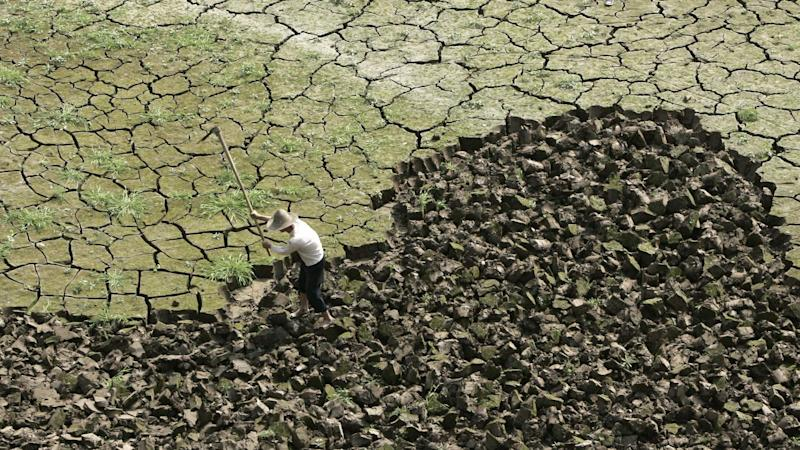 El Nino To Drive Temperatures To Record Highs