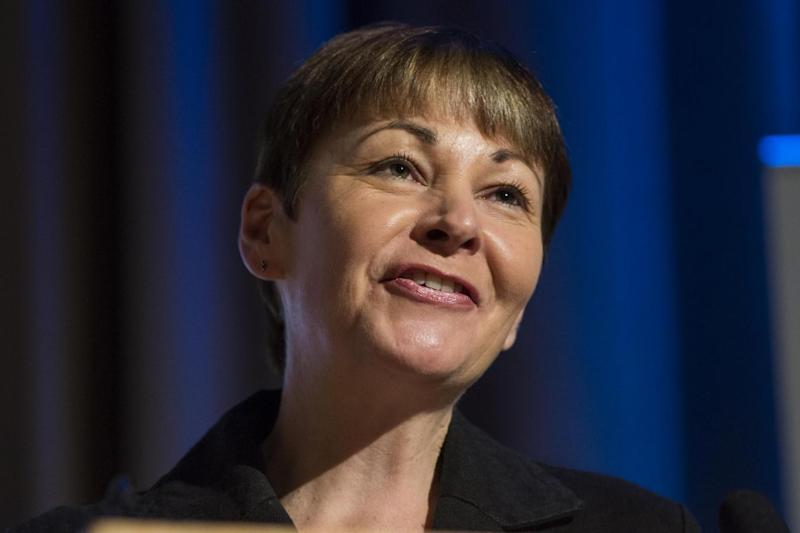 Caroline Lucas has been leading calls for the alliances (Getty / Jack Taylor)
