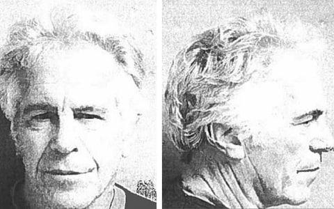 Epstein died in prison on August 10 in what coroners ruled a suicide; Miss Ransome is among those who believe he was murdered - Credit: US Marshals Service