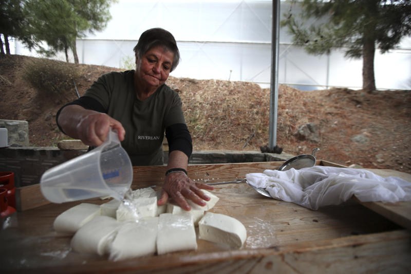 In this photo taken Wednesday Dec. 11, 2019, Aphrodite Philippou, 73, makes Cyprus' halloumi cheese at a farm in Kampia village near Nicosia, Cyprus. Cyprus' halloumi cheese, with a tradition dating back some five centuries, is the island nation's leading export. It's goat and sheep milk content makes it a hit with health-conscious cheese lovers in Europe and beyond. It's added appeal is that unlike other cheeses, it doesn't melt when heated up. (AP Photo/Petros Karadjias)