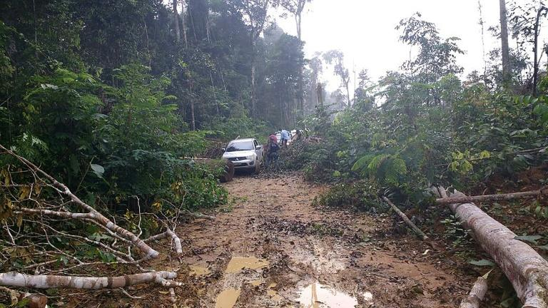 There are no proper roads and no cellphone signal in Gleba Taquarucu do Norte, near Colniza, in a remote area of western Brazil