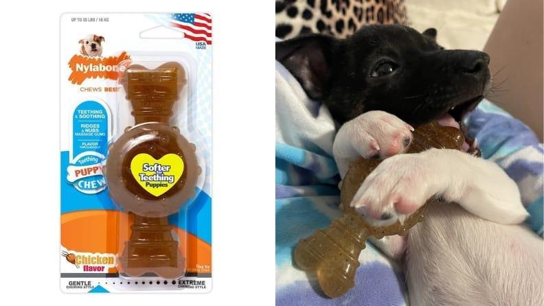You'll be glad to have this when your pup starts trying to chew on your fingers.