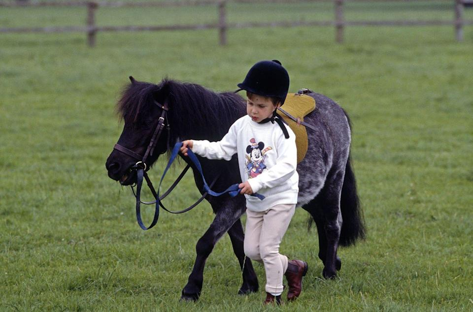 <p>Here, Prince William is pictured with his Shetland pony at Highgrove House in Doughton, Gloucestershire in 1986. </p>