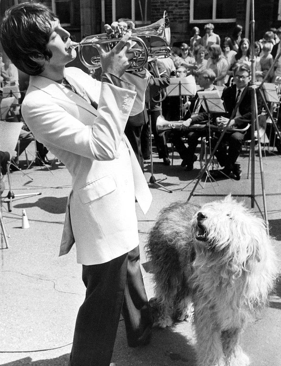 <p>Delighting his dog Martha during a performance in the U.K.</p>