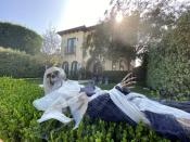 FILE PHOTO: A Halloween skeleton lies on the hedge outside a home in Los Angeles