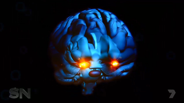The amygdala is affected in people suffering PTSD