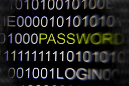 A magnifying glass is held in front of the word 'password' on a computer screen in this picture illustration taken in Berlin