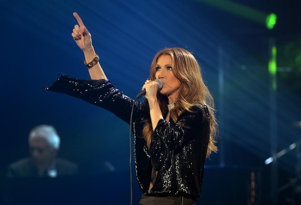 Canadian singer Celine Dion performs during her first of seven shows scheduled until December 5 at the Bercy's Palais Omnisports on November 25, 2013 in Paris. This is Dion's first concert in France since five years after she released her last album
