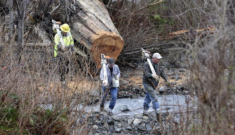 Volunteers with chainsaws cross a small creek as they head to the scene of a deadly mudslide Tuesday, March 25, 2014, in Oso, Wash. At least 14 people were killed in the 1-square-mile slide that hit in a rural area about 55 miles northeast of Seattle on Saturday. Several people also were critically injured, and homes were destroyed. (AP Photo/Elaine Thompson)