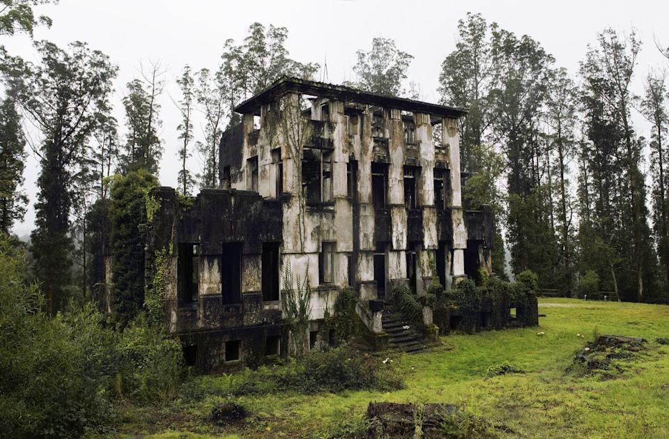 <p>Mother Nature reclaims the charred shell of a former sanitarium.</p>